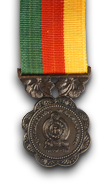 North and East Operations Medal